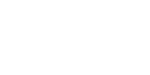 client-logo-Noctis